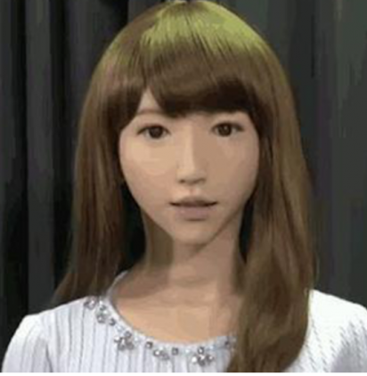 Japan has developed a female robot that can have children