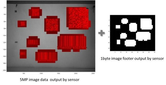 Image sensors pave the way for visual systems designed for applications