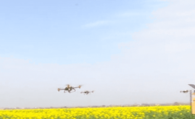 Spring ploughing under epidemic situation, the tuyere of agricultural robot